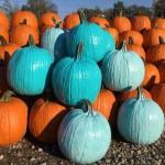 Teal Pumpkins and IP